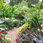 Kenapa Harus Menggunakan Jasa Tukang Taman Jakarta