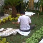Tips-Memilih-Jasa-Tukang-Taman-Yang-Berpengalaman