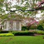 Tips-Menata-Taman-Rumah-Sederhana-Agar-Selalu-Bersih-dan-Rapi