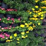 Faktor yang Mempengaruhi Biaya Tukang Taman Bogor